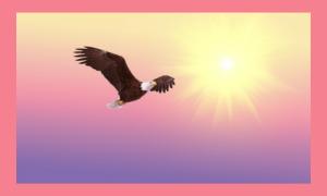 Verbinding Met Je Ziel Traject Voor Meer Innerlijke Vrijheid